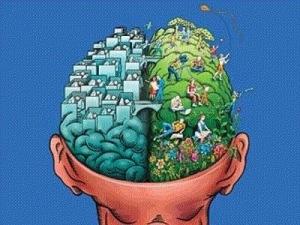 cognitivedissonancebrain
