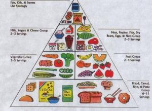 food_pyramid_gov